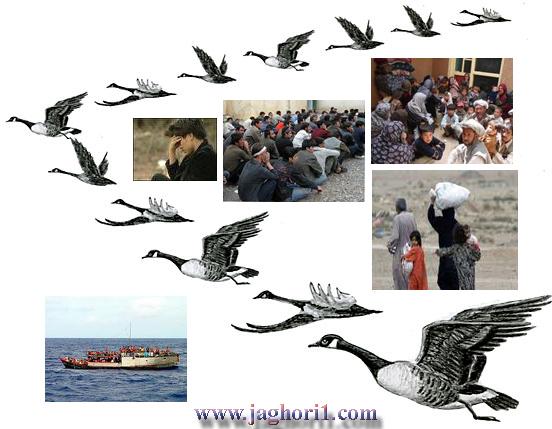 مهاجرت